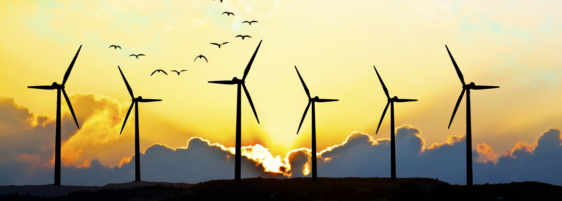 Wind Generators in front of a sunset